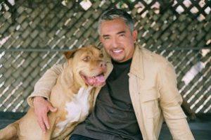"""Cesar Millan, TV's """"Dog Whisperer"""""""